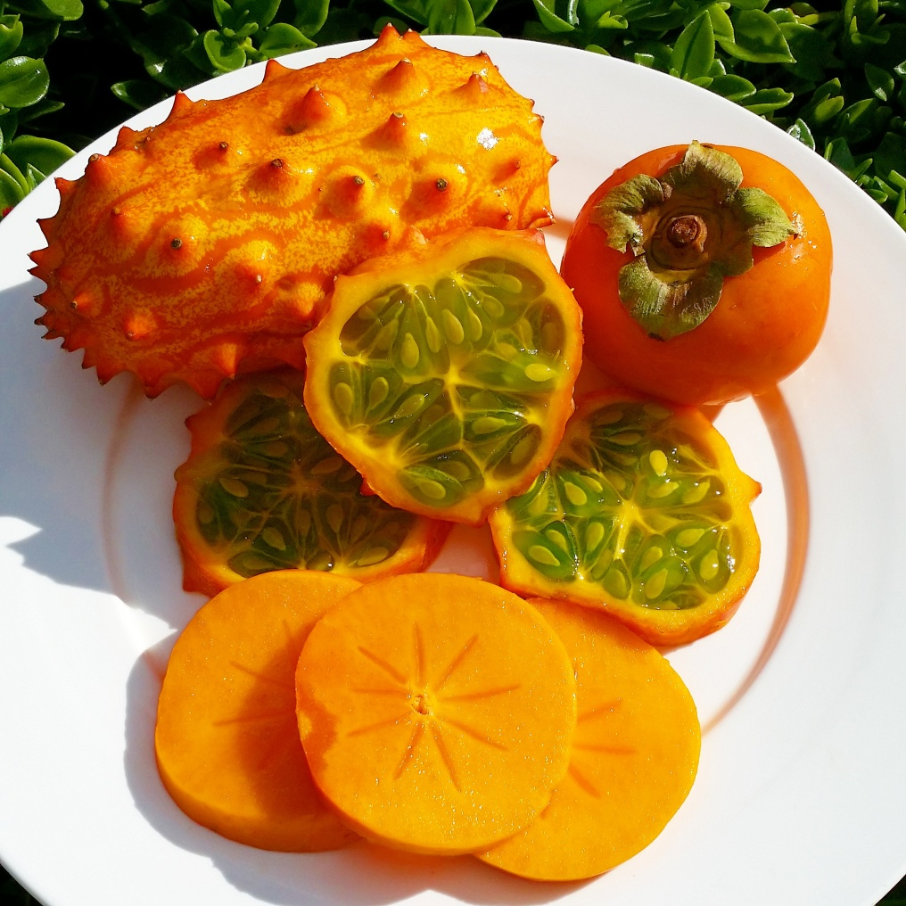 Persimmon & Horned Melon