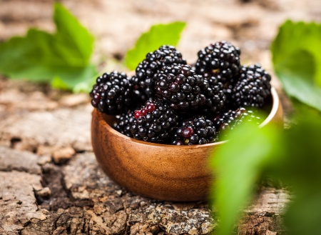 Blackberry Super Fruit
